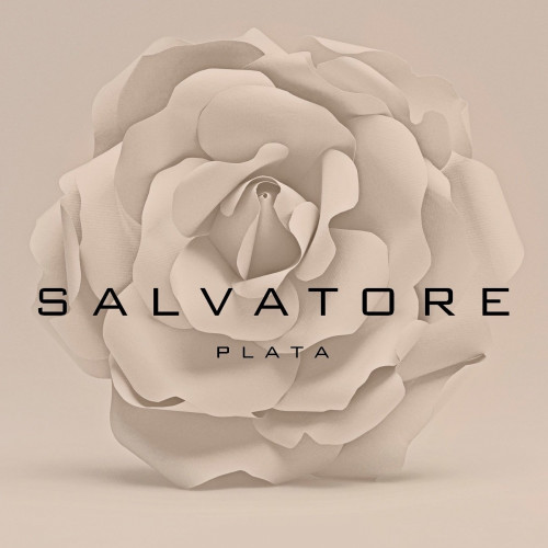PENDIENTES SALVATORE PLATA CHAPADA - 163A0164
